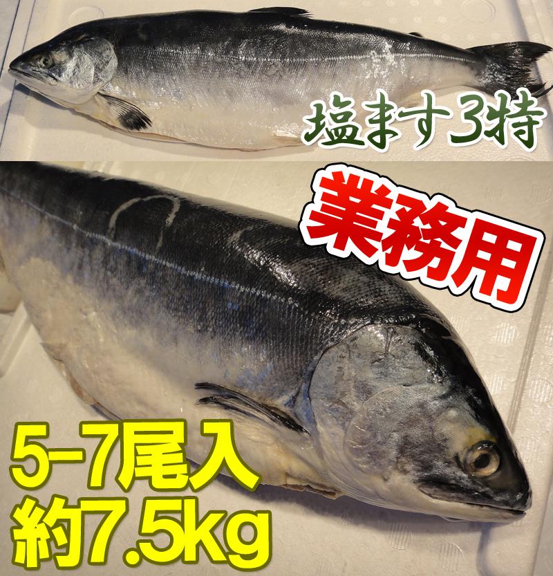 塩ます3特5−7尾入約7.5kg
